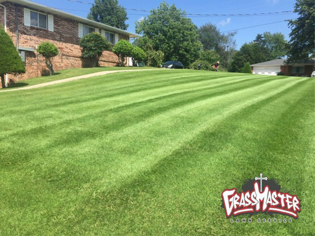 Lawn Mowing Poplar Bluff Mo Grassmaster Lawn Service